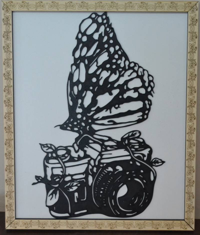 Butterfly frame with photo camera