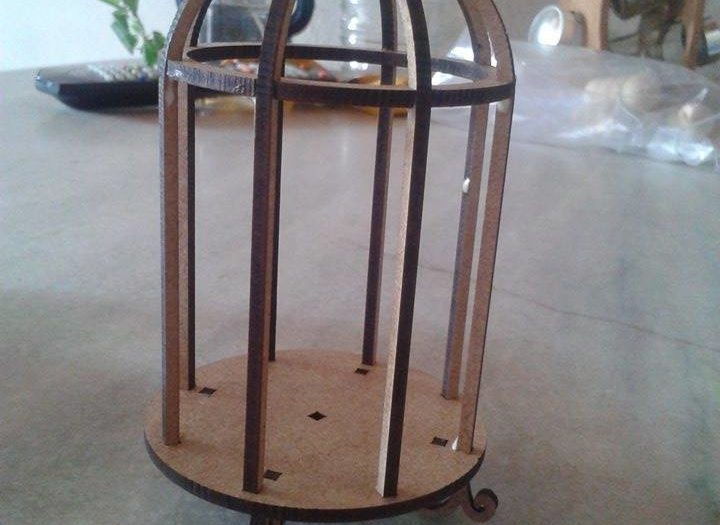 Cage for mounting