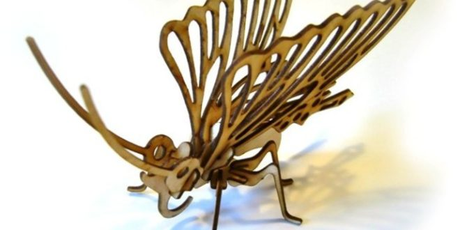 3D butterfly puzzle design