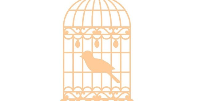 vector cage plane with bird