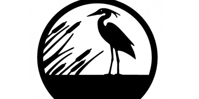 Bird on the lake FREE