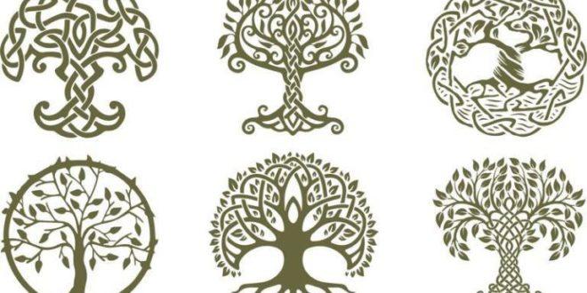 Celtic Trees 2D vectors silhouettes
