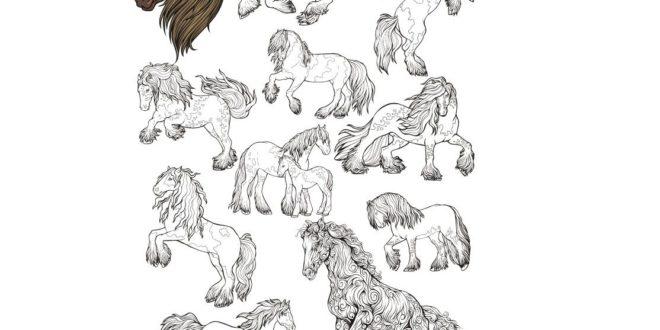 Horse CDR file package for laser engraving