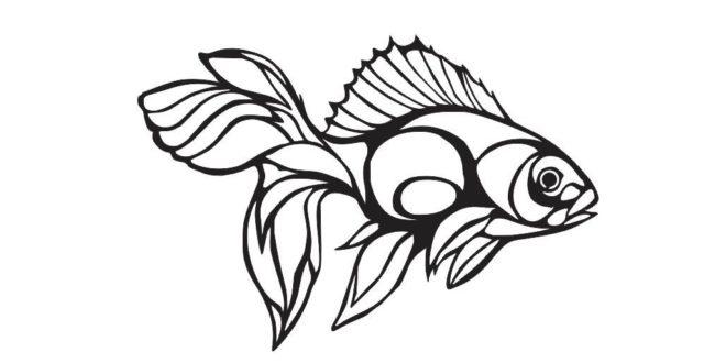 Betta splendens Fish Wall decoration vector dxf cdr sticker