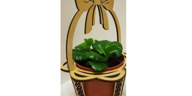 Pot and plant holder
