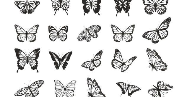 Butterflies Vectors 2d vectors pack cdr dxf