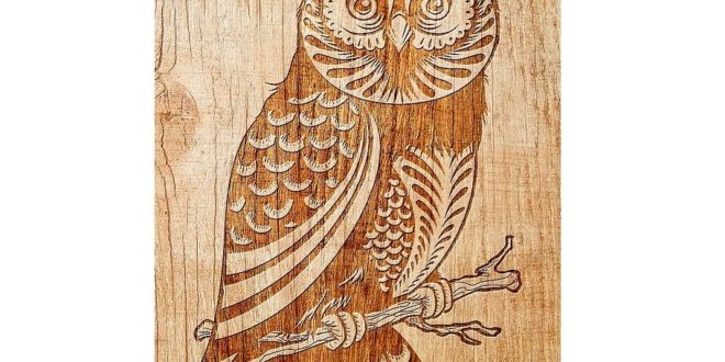 Owl vector for engraving cdr dxf files