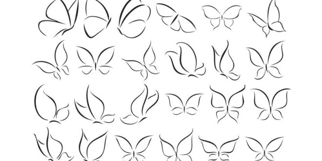 Free Vector Collection Butterfly contour silhouette