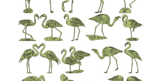 Free Cut Files Pack Package Flamingos Animals 2D