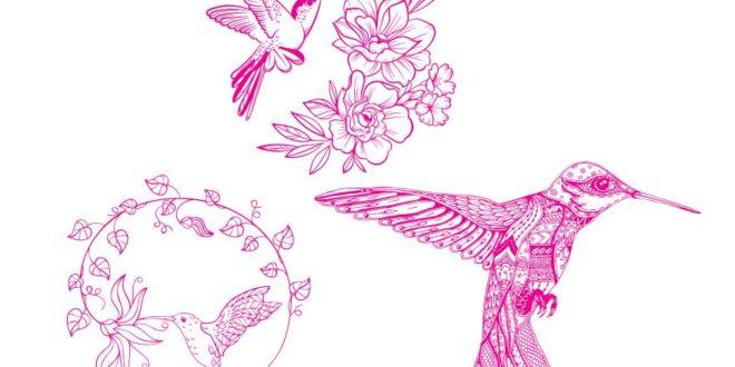 Laser Engraving Kolibri Hummingbird Cdr Corel Draw File