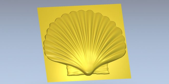 3D Model Relief  Seashell STL File 1450