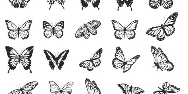 Free Butterfly 2D Vector Pack