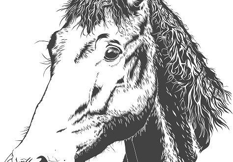 Free download Horse laser engraving vector file cdr