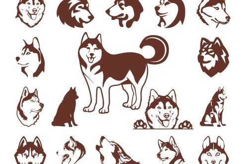 Silhouettes Dog Husky Engraving File Vectors dxf cdr