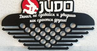 Free Fight judo medal cdr