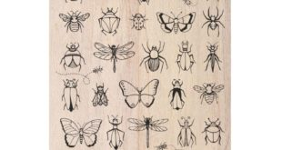 Free laser engrave insects pack cdr file vector