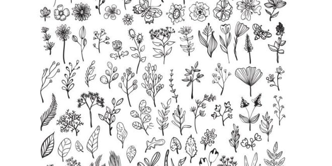 Free pack svg flowers cut files