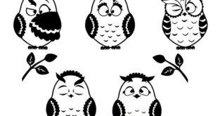 Free owls CDR vector
