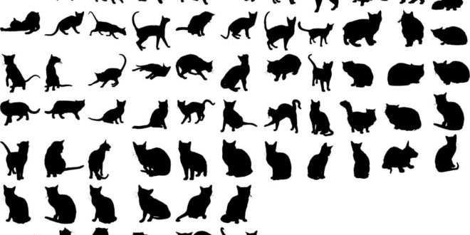 Svg Silhouette Cats Collection