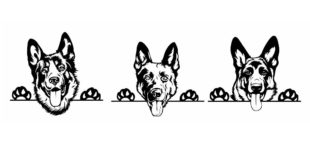 German Shepherd Dog Silhouette SVG DXF CDR Vectors