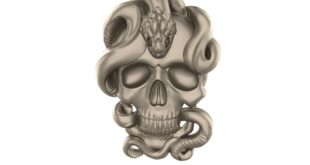 3D Relief skull with snake STL 1677