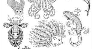 Cdr Vectors Pattern Animals 04