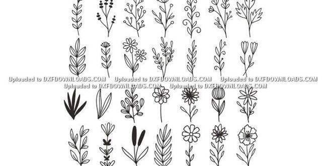 SVG Herbal Vectors 2D Set Free