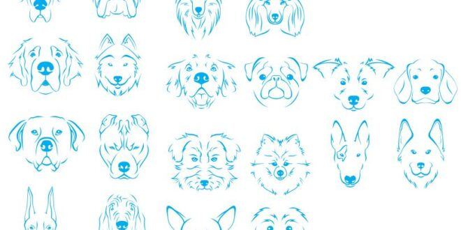 Set dogs line art Vectors DXF SVG CDR