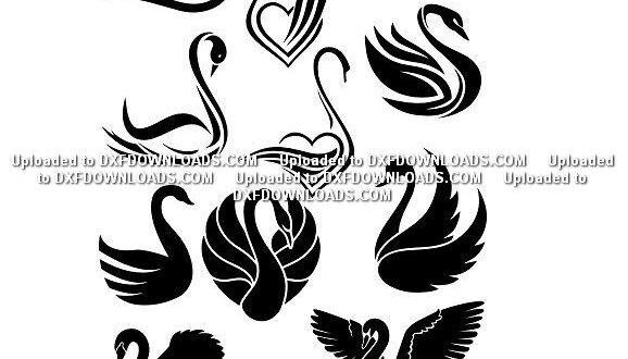 Free Swans svg silhouette
