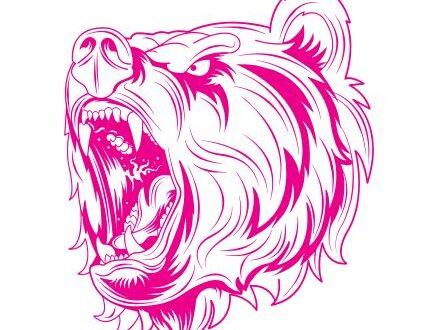 Free bear svg vector